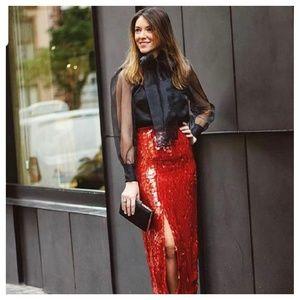 Zara sheer blouse (8003)